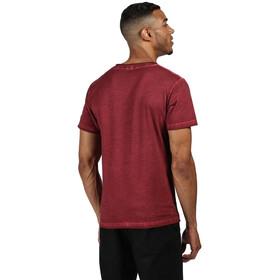 Regatta Calmon T-Shirt Men delhi red